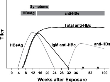 hepatitis b ac hbs positive