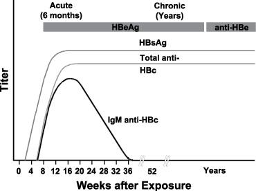 HBeAg (Hepatitis B e-antigen)   Newfoundland & Labrador